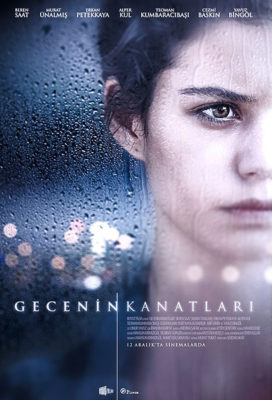 gecenin-kanatlari-the-wings-of-the-night-turkish-movies-english-subtitles