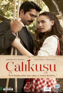 calikusu-wren-love-bird-%d8%b7%d8%a7%d8%a6%d8%b1-%d8%a7%d9%84%d8%ad%d8%a8-english-subtitles-arabic-dubbed-1
