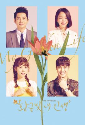 My Golden Life (2017) - Korean Drama - HD Streaming with English Subtitles
