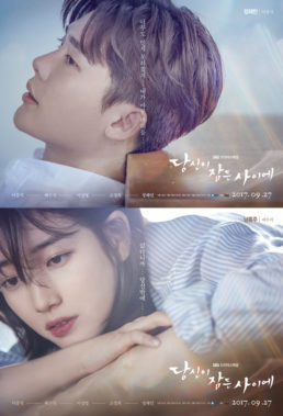 While You Were Sleeping (2017) - Korean Fantasy Drama - HD Streaming with English Subtitles