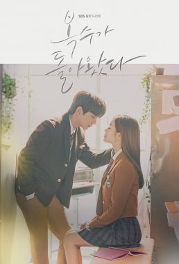 My Strange Hero (2018) - Korean Drama - HD Streaming with English Subtitles