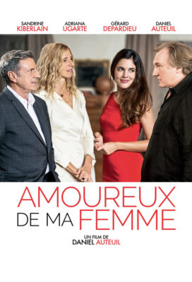 Amoureux de Ma Femme (The Other Woman) (2018) - French Movie - HD Streaming with English Subtitles