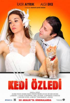 Kedi Özledi (Cat Missed) (2013) - Turkish Romantic Movie - HD Streaming with English Subtitles