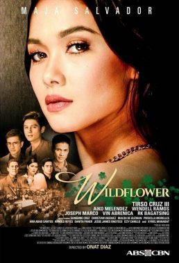 Wildflower (2017) - Philippine Teleserye - HD Streaming with English Subtitles