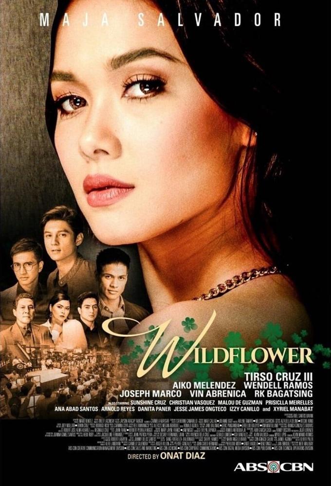 Wildflower (2017) - Philippine Teleserye - HD Streaming with English Subtitles