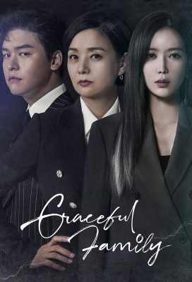 Graceful Family - Korean Drama Series - HD Streaming with English Subtitles